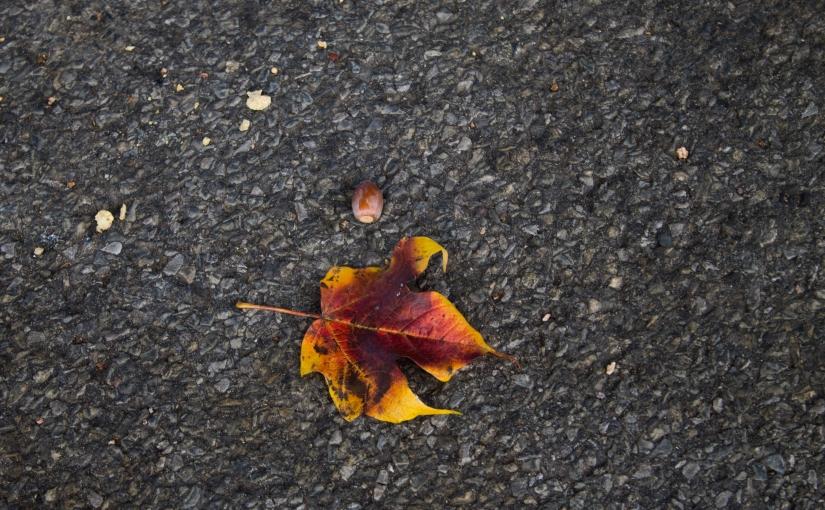 Fall on theGround